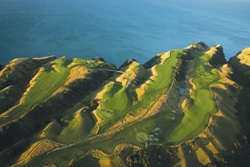 NZ-Cape-Kidnappers-il
